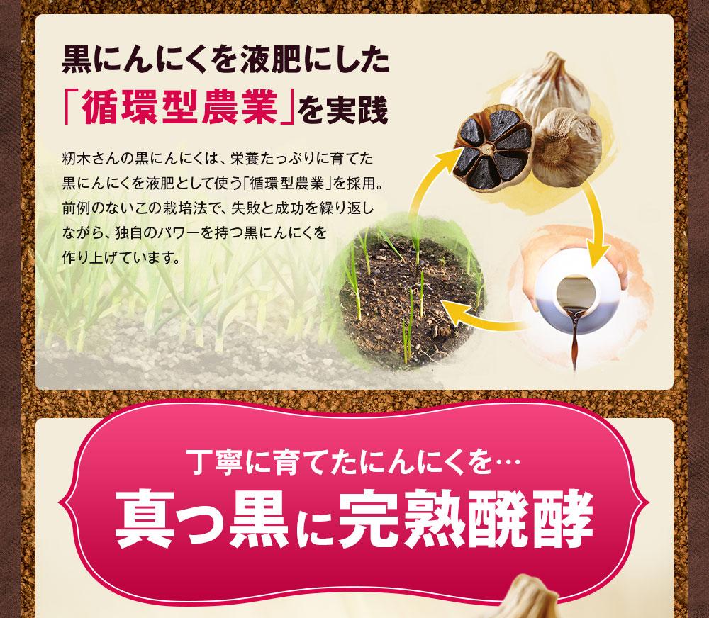 黒にんにくを液肥にした循環型農業を実践