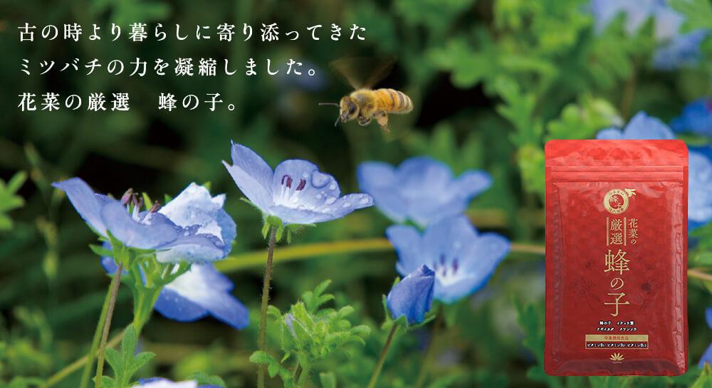 花菜の厳選 蜂の子