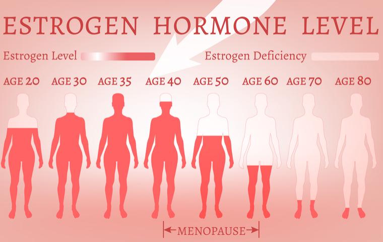 女性ホルモン01