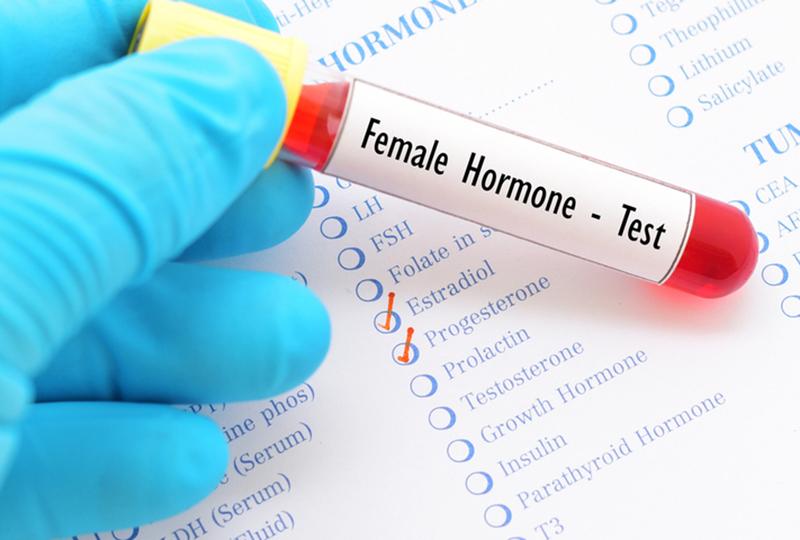 女性ホルモン03