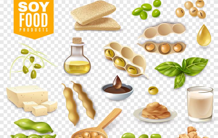 大豆 食べ物